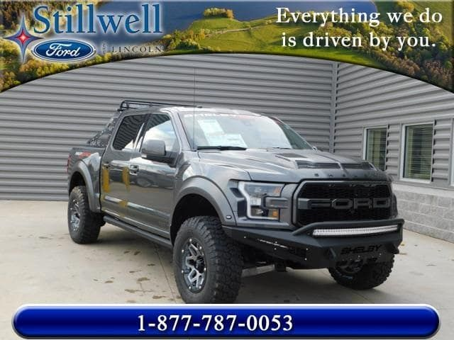new 2018 ford f 150 shelby baja raptor for sale hillsdale mi silver and gray car photography. Black Bedroom Furniture Sets. Home Design Ideas