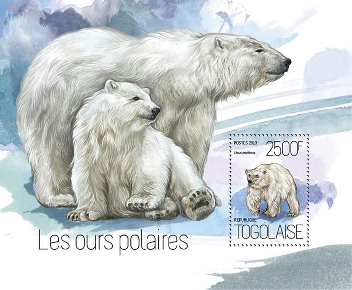 TG 13814 b – Polar bears, (Ursus maritimus).