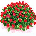 Glorifying bouquet of Dutch Roses to Bangalore Rs. 3695 / USD 61.58