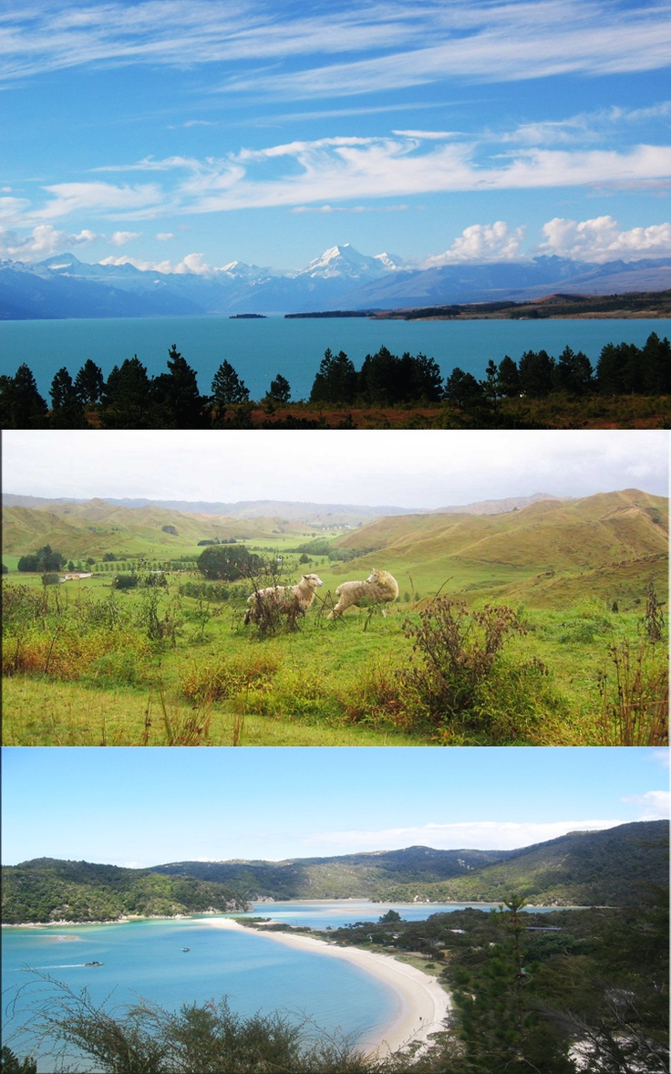 Amazing New ZealandDreams Travel, Travel Buckets Lists, South Pacific, Beautiful Places, Amazing Things, Favorite View, Zealand, Nature'S Beautiful, Güd