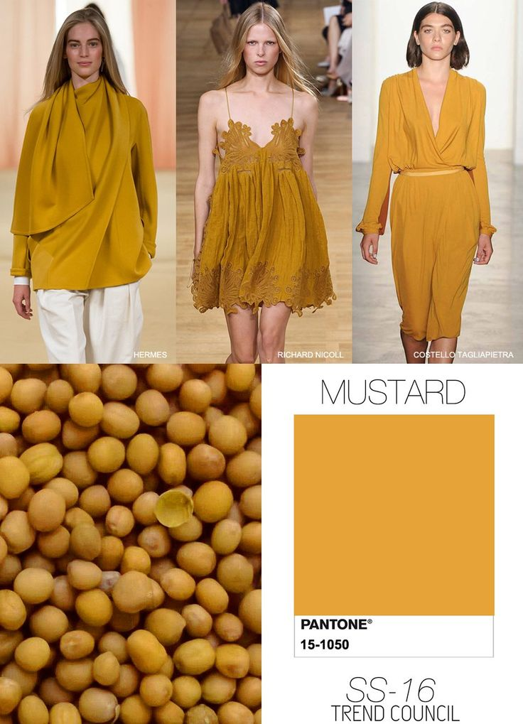 TREND COUNCIL SS16, Mustard is back, colour trend. http://designlimitededition.com/