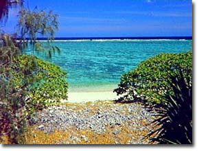 lady musgrave island (australia)