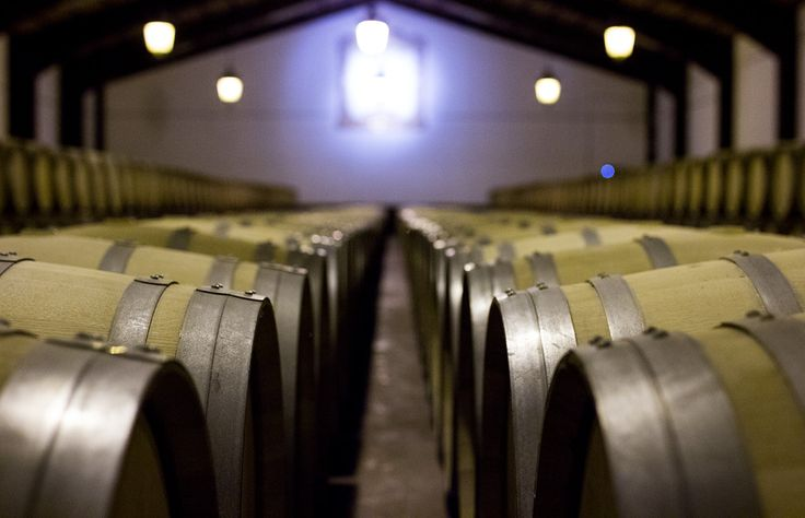 Spain is one of the few places in the world that has valued the importance of American oak in winemaking. Are you a for American oak? In Rioja, wines are classified by how long they age in barrels, making it easy to find a style you like.
