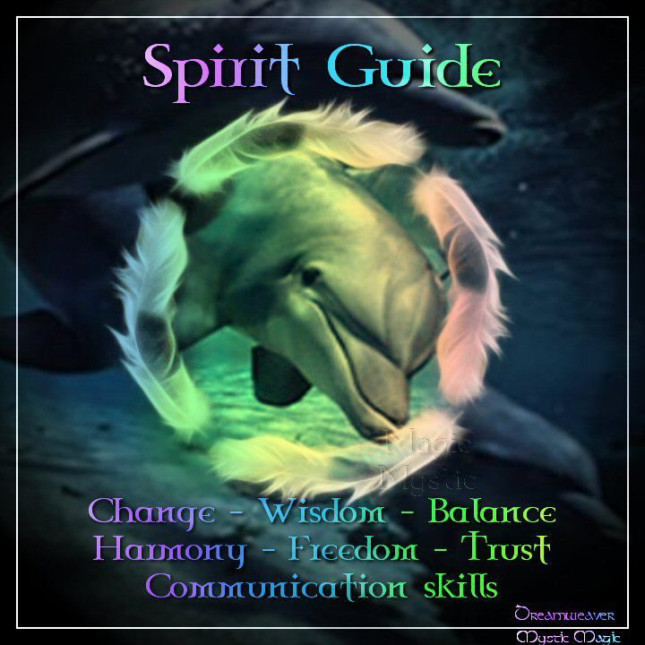 from the mystic magic community on facebook ....   dolphin as a spirit guide