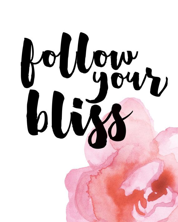 Follow your bliss.