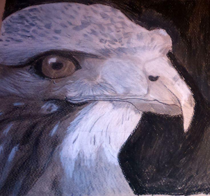 """2015. októberében megrendezésre került a Valdor Art """"Pálcikaembertől a portrérajzolásig"""" című kiállítása, melyen tanulóink munkáit mutattuk be. Ezt a csodás alkotást is a kiállításra szánta az alkotója! Ha Te is szeretnél ilyen profi szinten rajzolni, akkor látogass el weboldalunkra, és válogass kedvedre élő és online tanfolyamaink közül! A képet készítette: Szatai Emma www.valdorart.hu"""