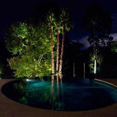 Hawthorn - Gardens At Night