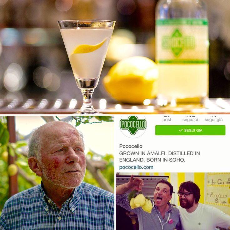 "Grown in Amalfi, #Distilled in #England, Born in #Soho .... ""#Pococello"" .... #Limoncello with #Lemons of #Amalfi - Aceto's Family!!  #whenlemonsgiveyoulife #Lemon #amalficoast #amalfilemon #liquor #digestive #longdrink #cocktail #bartender #barman #instadrink #organic #production"