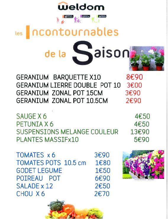 Les premières fleurs et les premiers légumes sont arrivés dans votre magasin Weldom. Production locale(Primaflor) en provenance des serres d'Arc-En-Barrois