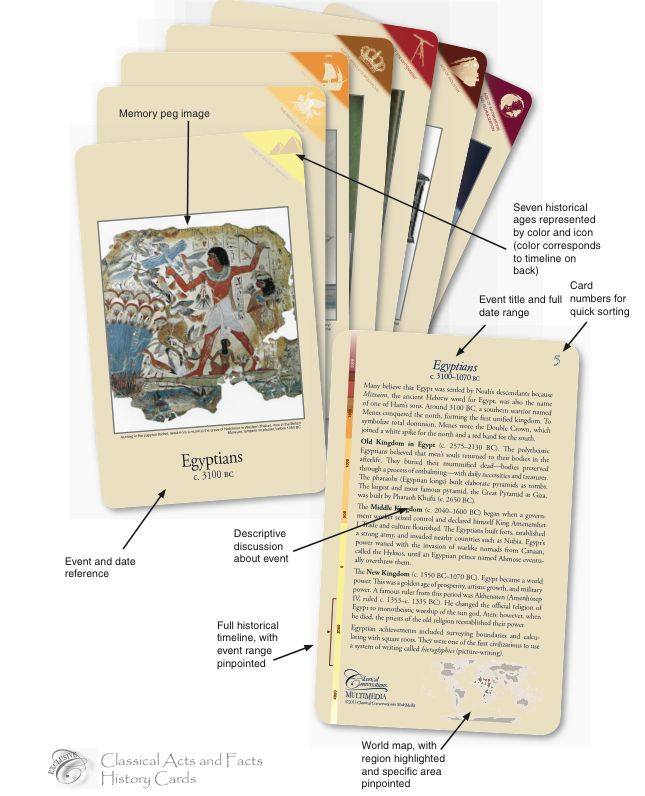 Classical Acts and Facts History Cards - NEW!