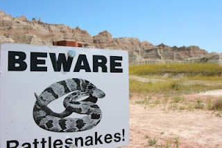 The Badlands, South Dakota - look out for rattlesnakes!
