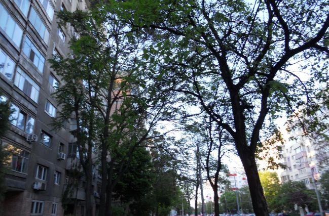 Apartament 2 camere 1 Mai - Turda, 970RUN3728