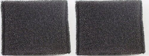 HOOVER STEAM VAC FILTER (2 Pack)