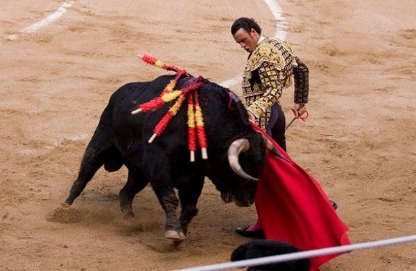 KLIKsee - Corrida de Toros (Spanish-style bullfighting)