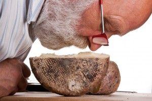 ALMA Caseus per far conoscere i formaggi italiani -