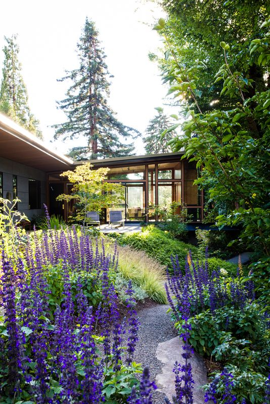 This garden lets the native woodland wander through. In the Summer 2017 issue of Garden Design. Photo by Claire Takacs.