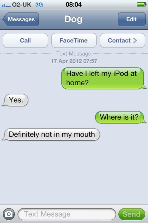 Text from Dog - funny stuff!!! textfromdog.tumblr.com