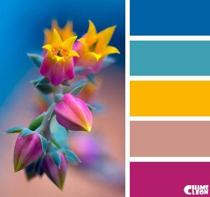 Fabulous Color Combines several beautiful colors: contrasting shades of yellow, orange,Colorful Palette CHAMELEON. Color Palette. / Kräftige, fröhliche Farbkombination