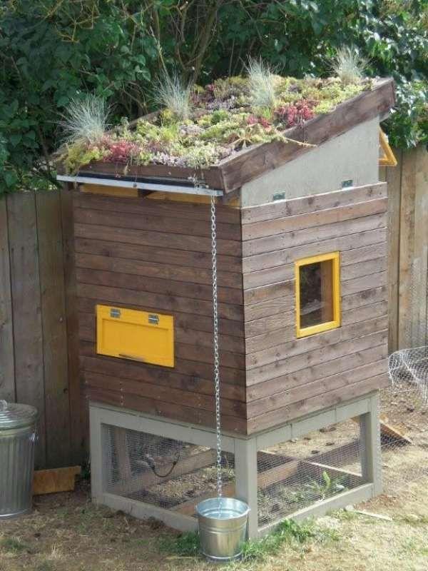Poulailler avec un jardin sur le toit - 21 idées géniales de poulaillers à construire soi-même avec de la récup