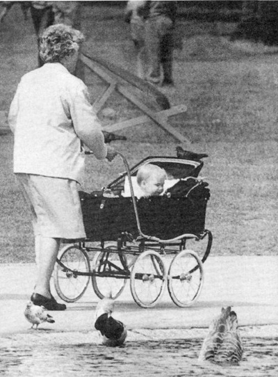 220 Best Images About Prams On Pinterest Antiques
