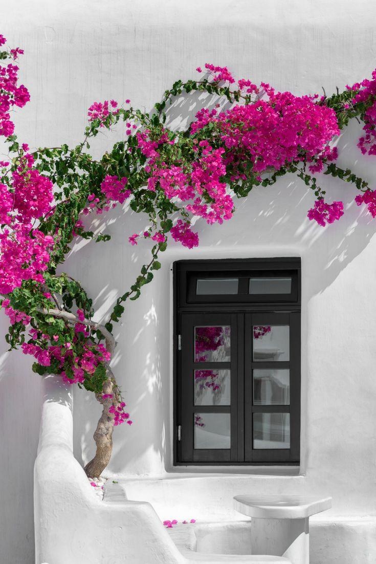 #BecomeTraveler #GreekIslands #IslandHopping #Greece #Hopwave #Windows #GreekIsland