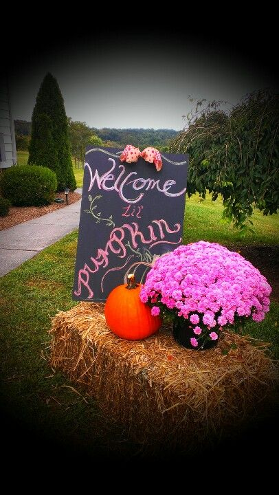 Fall Baby Showers ~ Fall baby shower don t forget our little pumpkin