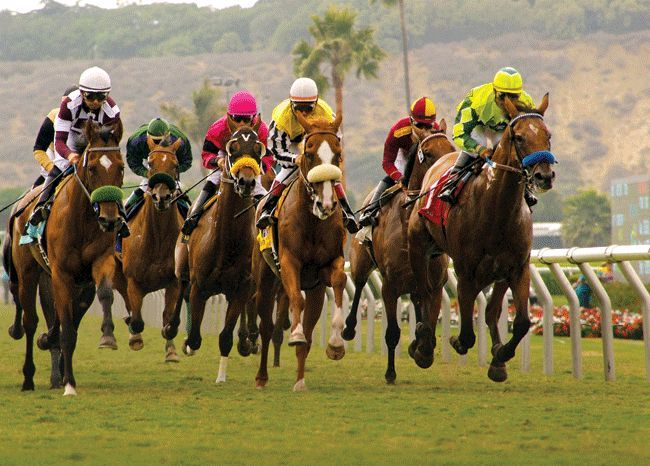 Get best tips for #Horse_Racing_Tomorrow if you want to earn money from it. RaceDayRating provides you the important and latest tips and techniques to get a better result in racing.