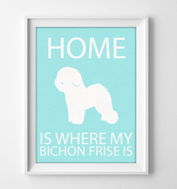 """8x10"""" Bichon Frise Wall Art, Illustrated Dog Art, Bichon Frise Decor, Dog Breed Wall Art, Minimalist Pet Art, Puppy Print, Bishon Frise Gift"""