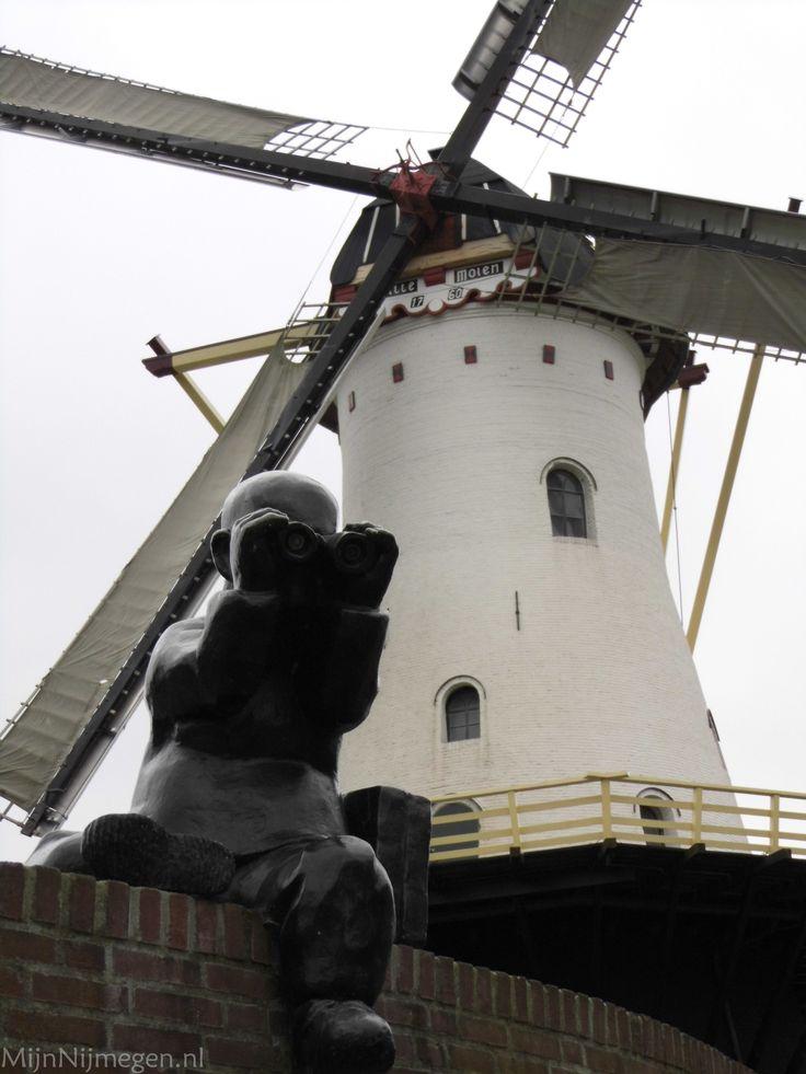 Sculptuur van Erik Buijs in het Florapark in de Wolfskuil plus de Witte molen op de Looimolenweg te Nijmegen.