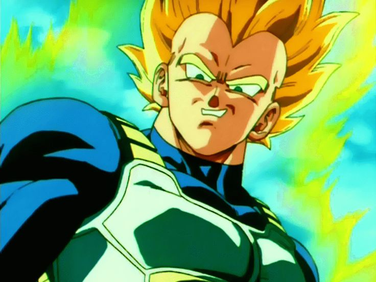 I got: Vegeta!! Which Dragon Ball Z Villain Are You?