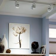 Track and Rail System | WAC Lighting Co.
