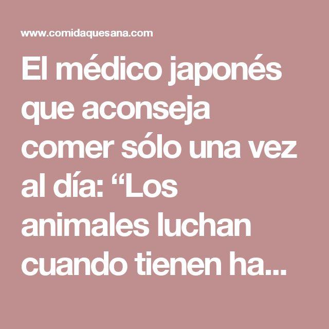 """El médico japonés que aconseja comer sólo una vez al día: """"Los animales luchan cuando tienen hambre"""" - Comida que Sana"""