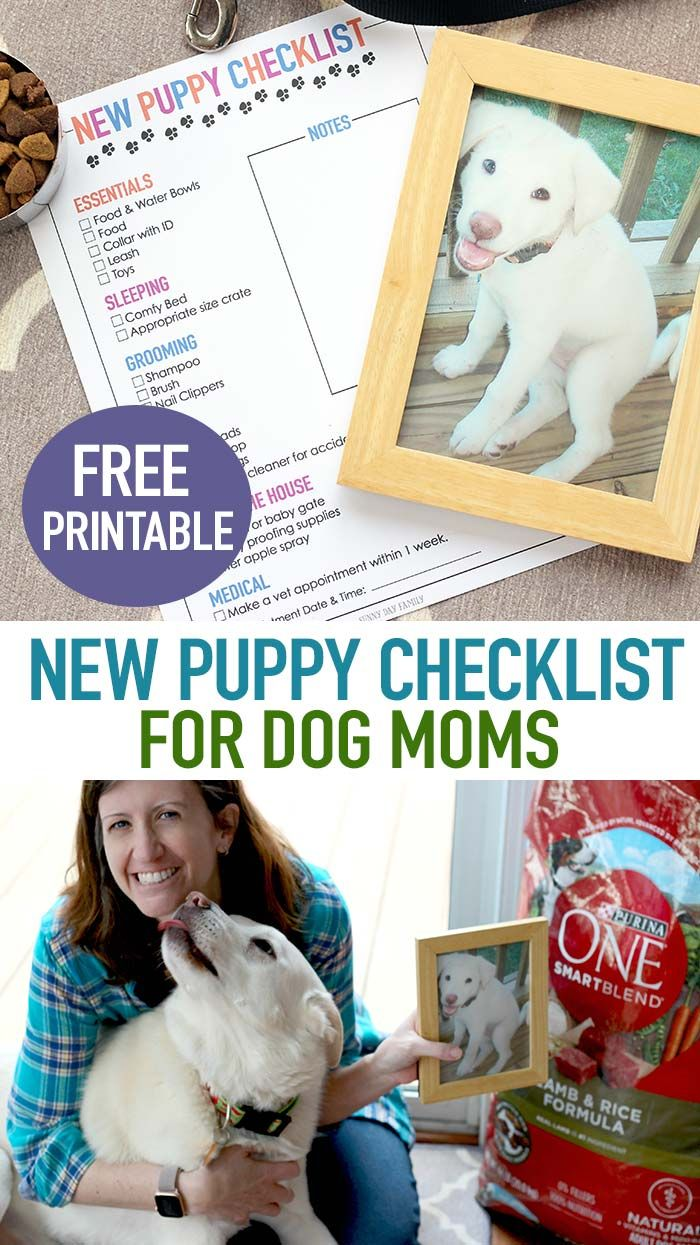 Choosing The Right Food For Your Dog Puppy Checklist New Puppy Checklist Dog Supplies List