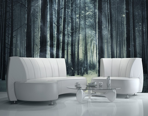 Details about photo wall mural mystical winter forest for Mural room white house