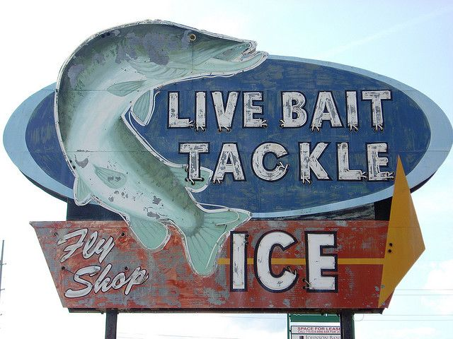 65 best bait shop images on pinterest fishing stuff for Vintage fishing signs