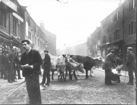 Colne's last cattle fair 1957