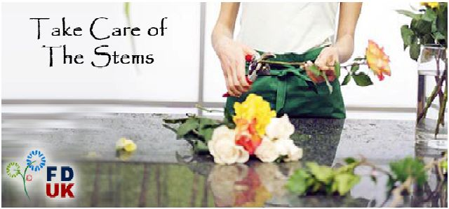 Find tips for cut a flower stems. Cut your flower stems with these steps. Follow the steps for cutting flower stems. So,Send flowers UK with these tips.