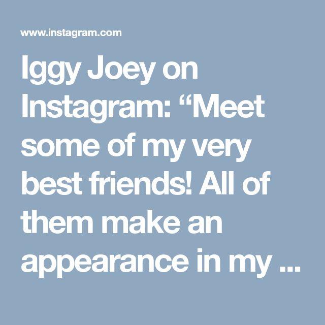 "Iggy Joey on Instagram: ""Meet some of my very best friends! All of them make an appearance in my new emoji app IggyMoji! From left Spartan, Me, Auggie, Artoo &…"" • Instagram"