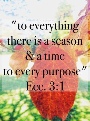 Hot Tea and the Empty Seat : Loving Your Season {Wednesday's Words}