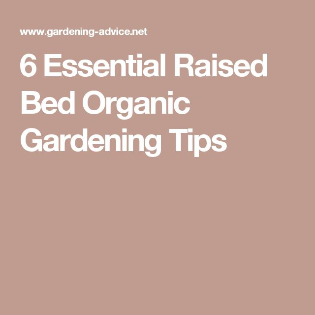 6 Essential Raised Bed Organic Gardening Tips