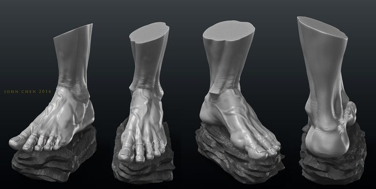 ArtStation - Foot Anatomy Study, John Chen | feet in 2019 ...
