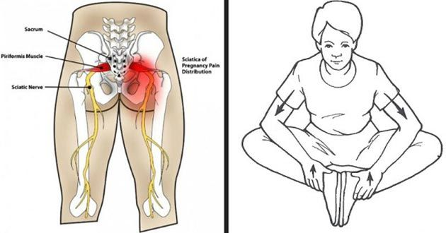 6 Ejercicios para SANAR el dolor del NERVIO CIATICO, dolor de CADERA y ESPALDA y lubricar las articulaciones. No te los pierdas!!