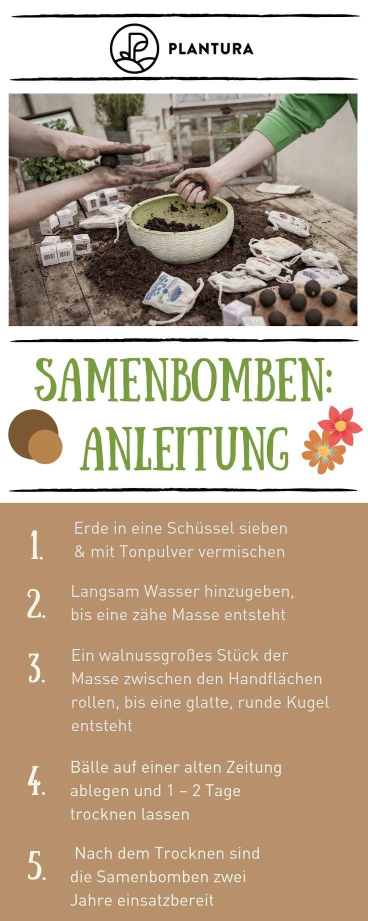 Saatbomben selber bauen: Anleitung für eigene Saatbomben