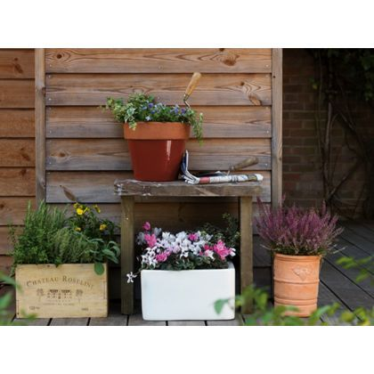 Wine Crate Garden Planter - 36cm at Homebase -- Be inspired and make your house a home. Buy now.