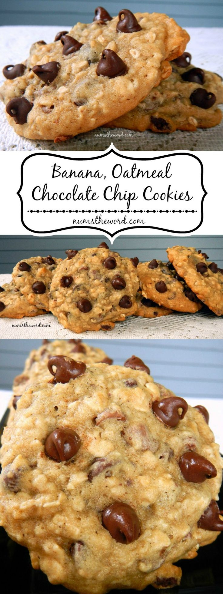 Breakfast or Dessert? Healthy Banana, Oatmeal, Chocolate Chip Cookies sound like a dessert, taste like a dessert but pass as breakfast in my house!