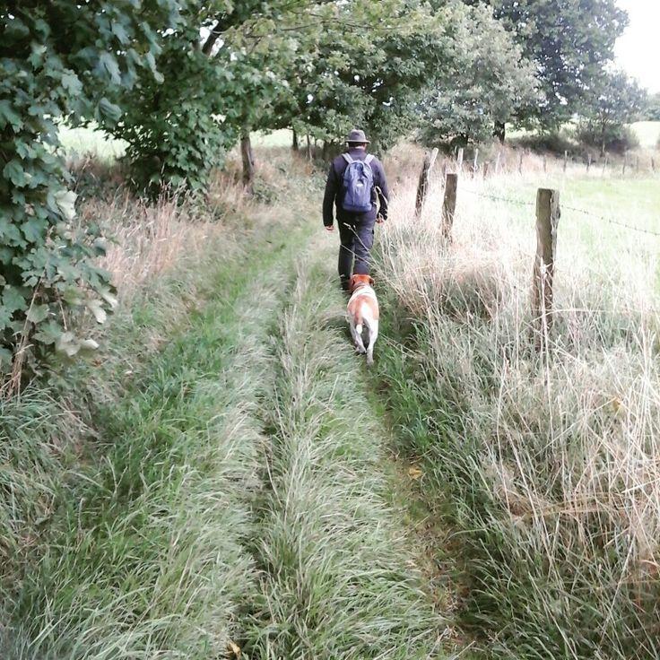 Sonntagsspaziergang bei Wind und Wetter mit Freunden und Hund / Walking with friends and dog / Wermelskirchen, Bergisches Land, Wandern, Dhuenn