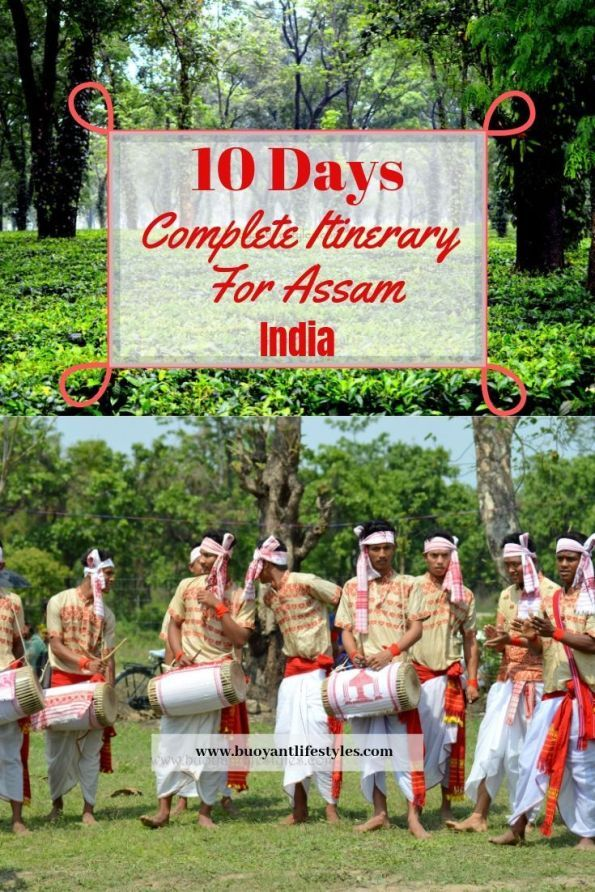 10 Days Complete Itinerary for Assam , India - Buoyant Lifestyles