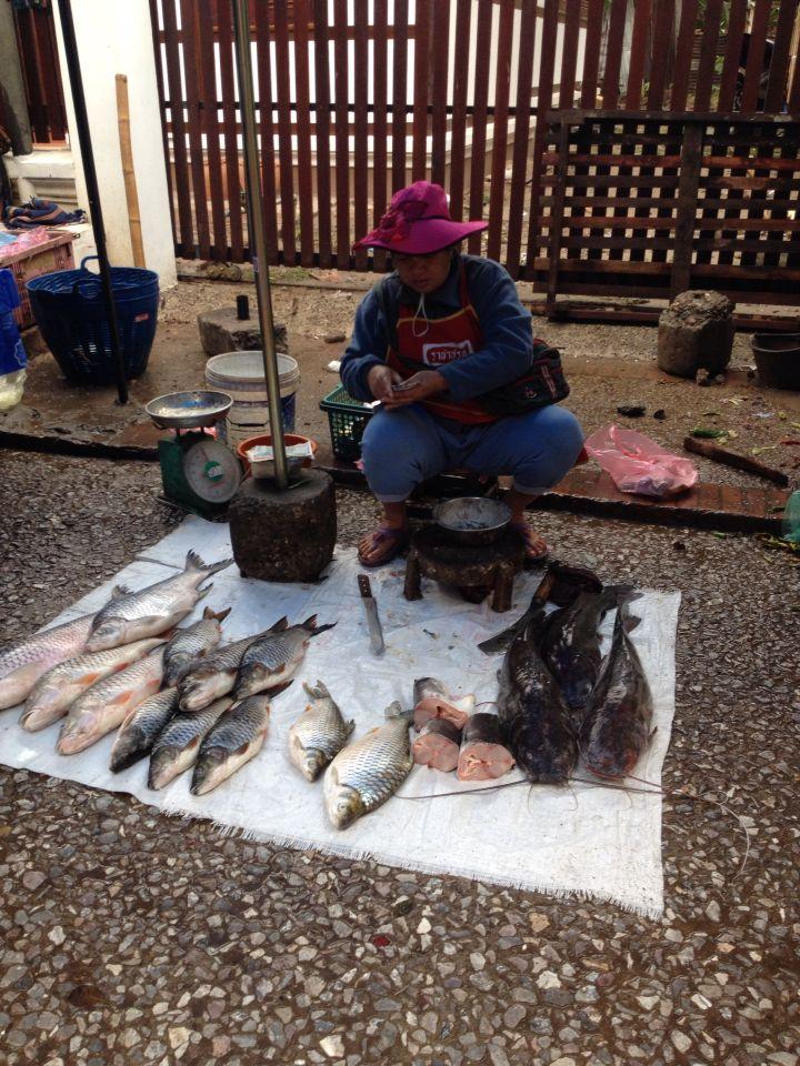 ขายปลา