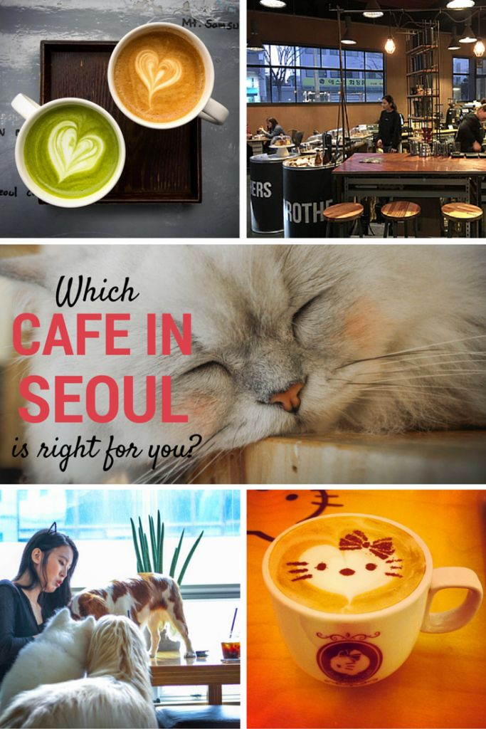 Find out which cafe in Seoul is right for you!