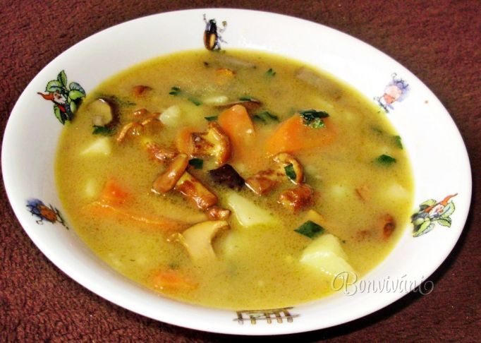 Hríbovica - Slovak mushroom soup (Slovak language)